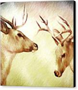 Winter Deer Canvas Print by Bob Orsillo