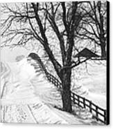 Winter Driveway Canvas Print by Wendell Thompson
