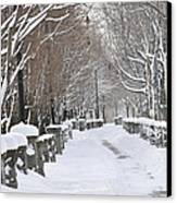 Winter Canvas Print by Frederico Borges