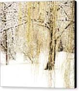 Winter Gold Canvas Print by Julie Palencia