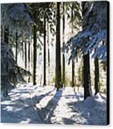 Winter Landscape Canvas Print by Aged Pixel