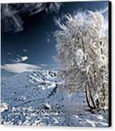 Winter Landscape Canvas Print by Grant Glendinning