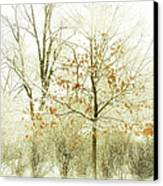 Winter Leaves Canvas Print by Julie Palencia
