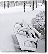 Winter Park With Benches Canvas Print by Elena Elisseeva