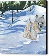 Winter Romp Canvas Print by Molly Poole