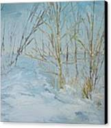 Winter Scene Canvas Print by Dwayne Gresham