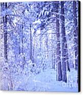 Winter Solace Canvas Print by Tara Turner