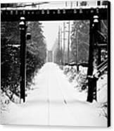 Winter Tracks Canvas Print by Aaron Lee VonBerg