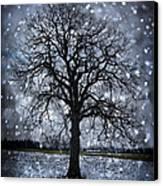 Winter Tree In Snowfall Canvas Print by Elena Elisseeva