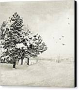 Winter White Canvas Print by Julie Palencia