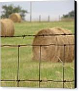 Wire And Hay Canvas Print by Jewels Blake Hamrick
