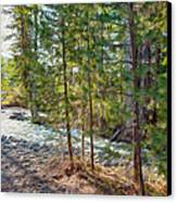 Wolf Creek Stretching Out Canvas Print by Omaste Witkowski