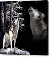Wolf  Howling Memory Canvas Print by Regina Femrite
