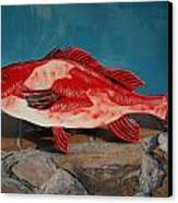 Wooden Red Snapper Canvas Print by Val Oconnor