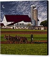 Working The Fields Canvas Print by Susan Candelario