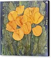 Yellow Tulips Canvas Print by Carolyn Doe