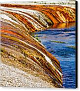 Yellowstone Earthtones Canvas Print by Bill Gallagher
