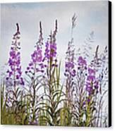 Yukon State Flower Canvas Print by Priska Wettstein