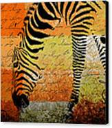 Zebra Art - Rng02t01 Canvas Print by Variance Collections