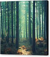 The Green Ray Canvas Print by Paul Grand
