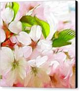 A Day In Spring Canvas Print by Steve K
