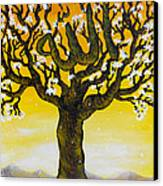 Allah's Name In A Tree Canvas Print by Felicity LeFevre