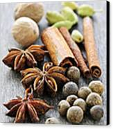 Assorted Spices Canvas Print by Elena Elisseeva