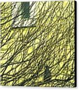Branch Office Canvas Print by Joe Jake Pratt
