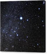 Canis Major Constellation Canvas Print by Eckhard Slawik