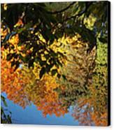 Colorful Reflections Canvas Print by LeeAnn McLaneGoetz McLaneGoetzStudioLLCcom