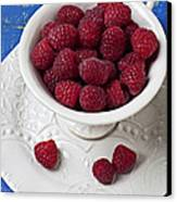 Cup Full Of Raspberries Canvas Print by Garry Gay