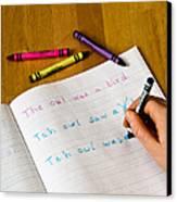 Dyslexia Testing Canvas Print by Photo Researchers, Inc.