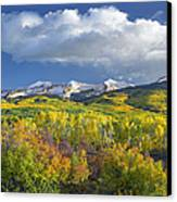 East Beckwith Mountain Flanked By Fall Canvas Print by Tim Fitzharris