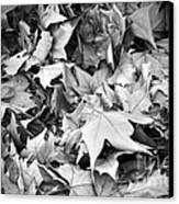 Fallen Leaves Canvas Print by Fabrizio Troiani