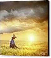 Farmer Checking His Crop Of Wheat  Canvas Print by Sandra Cunningham