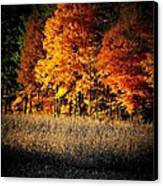 Indiana Autumn Canvas Print by Michael L Kimble