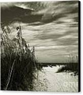 Let's Go To The Beach Canvas Print by Susanne Van Hulst