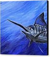 Marlin Canvas Print by Jenn Cunningham