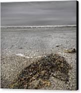 On The Beach Canvas Print by Andy Astbury