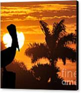 Pelican At Sunset Canvas Print by Dan Friend