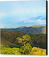 Rinca Panorama Canvas Print by MotHaiBaPhoto Prints