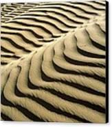 Rippled Sand Dunes Canvas Print by Tek Image