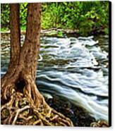 River Through Woods Canvas Print by Elena Elisseeva