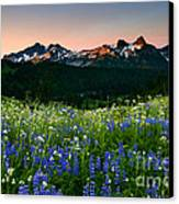 Tatoosh Dawn Canvas Print by Mike  Dawson