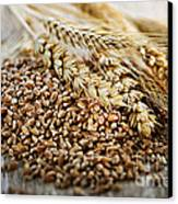 Wheat Ears And Grain Canvas Print by Elena Elisseeva