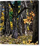 Autumn Landscape Canvas Print by Vladimir Kholostykh