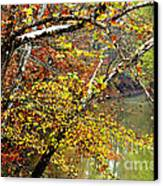 Fall Along West Fork River Canvas Print by Thomas R Fletcher