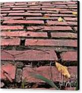 Old Red Brick Road Canvas Print by Yali Shi