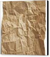 Brown Paper Canvas Print by Blink Images