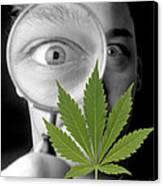 Cannabis Research Canvas Print by Victor De Schwanberg